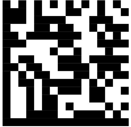 Data Matrix-yi-label